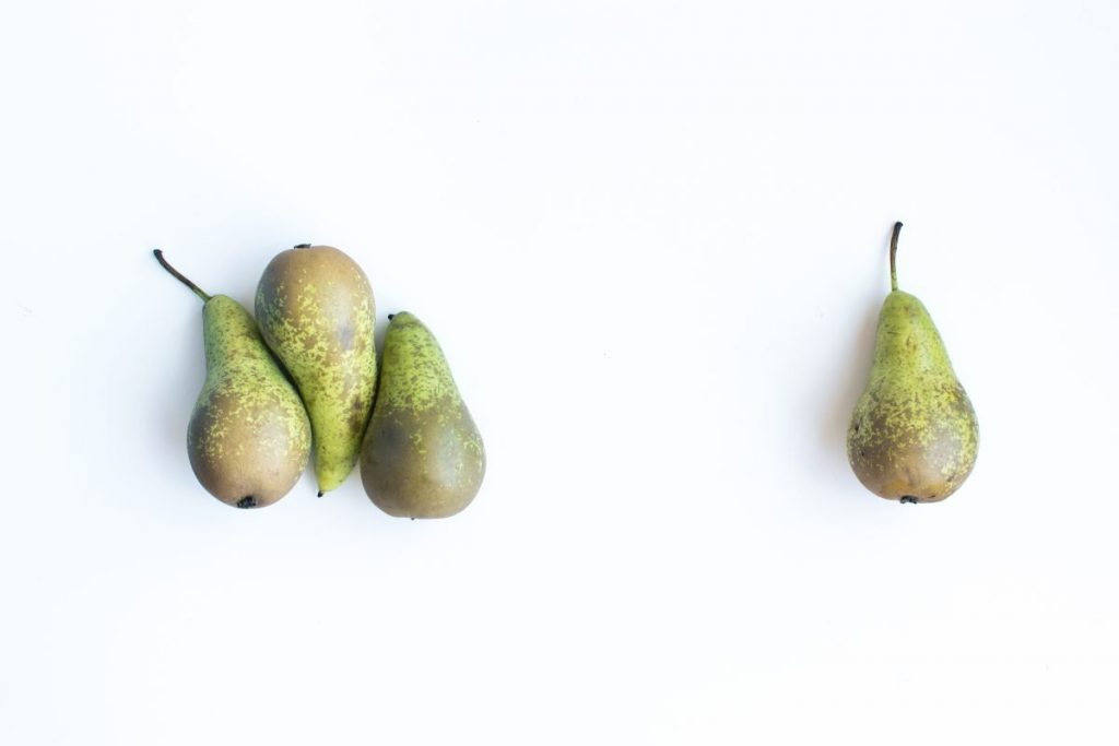 Pears on a white background