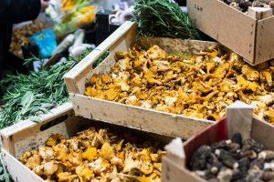 Mushrooms at farmers market