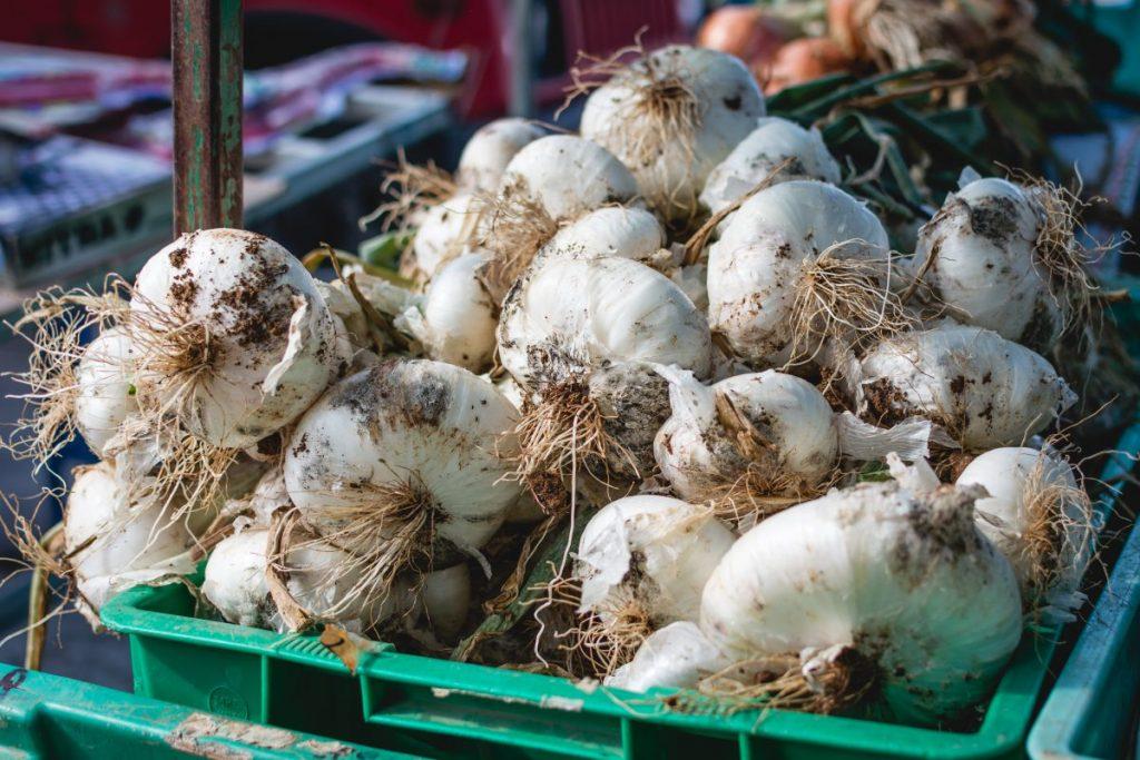 Dirty garlic on a market