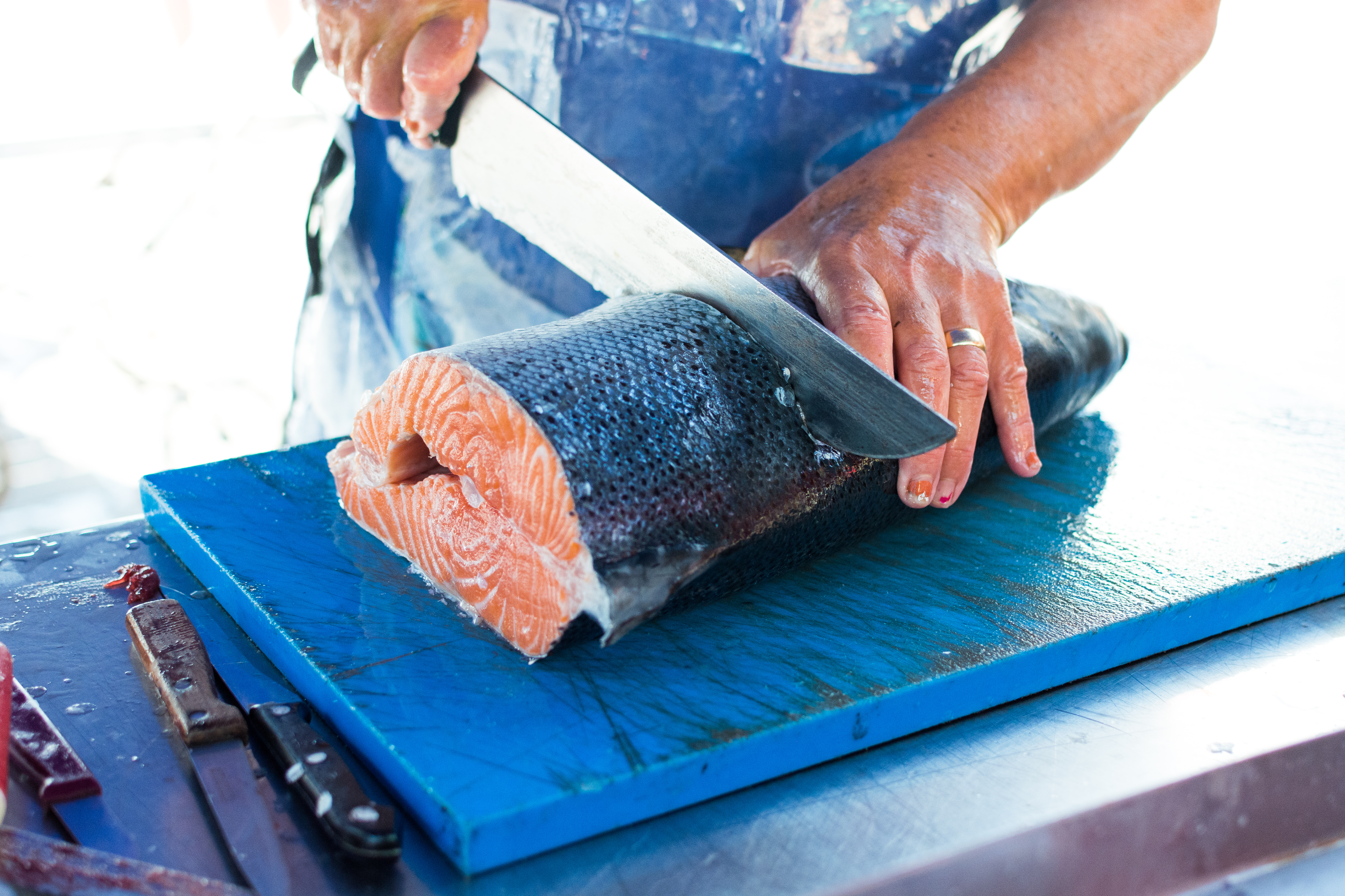 Cutting fresh caught salmon