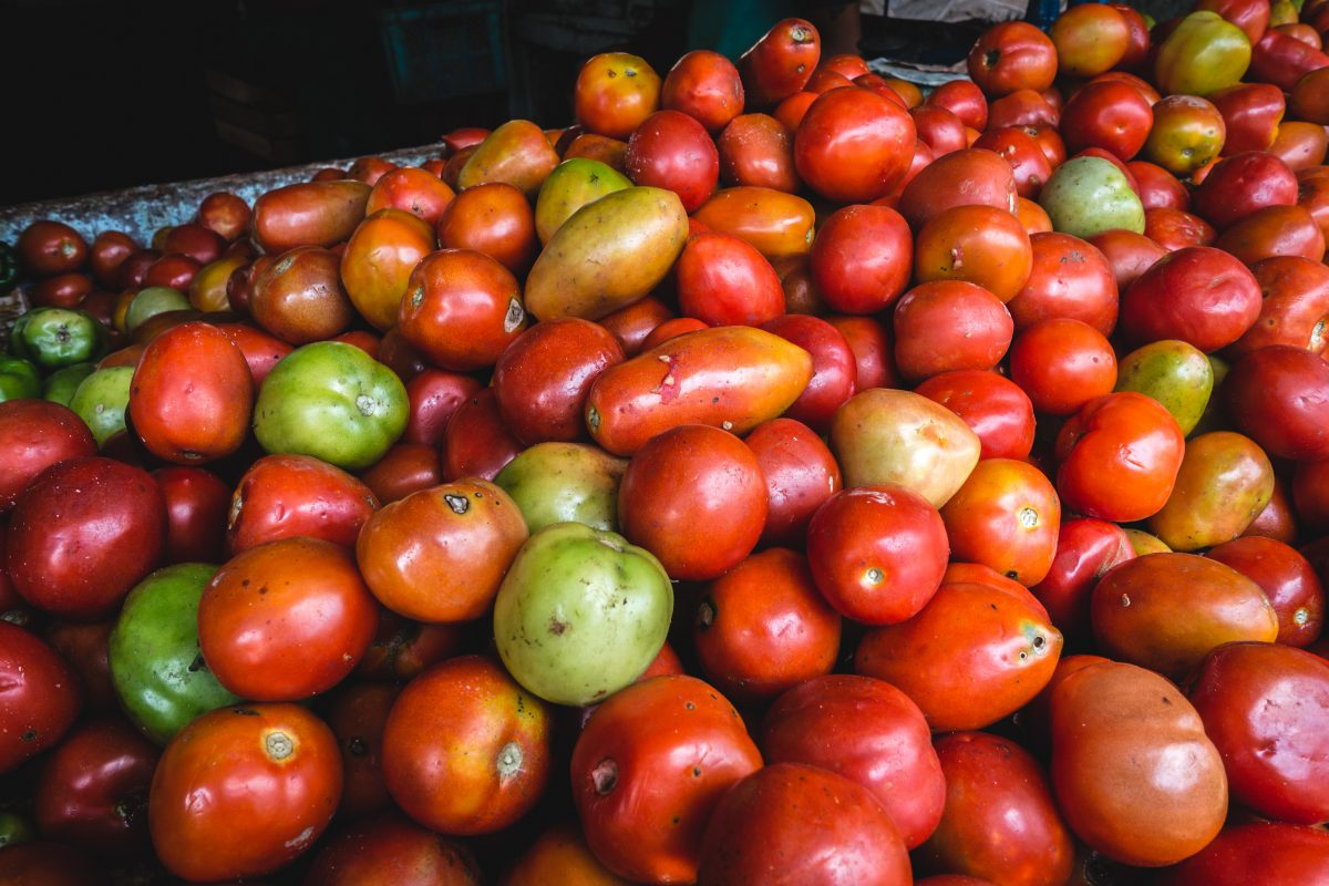Fresh tomatoes at a farmers market