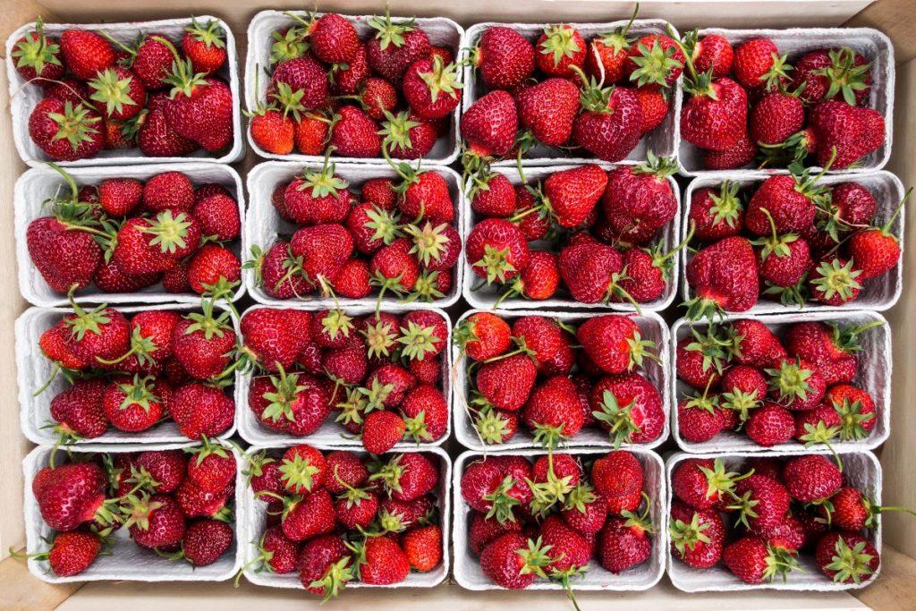 Fresh strawberries at a farmers market