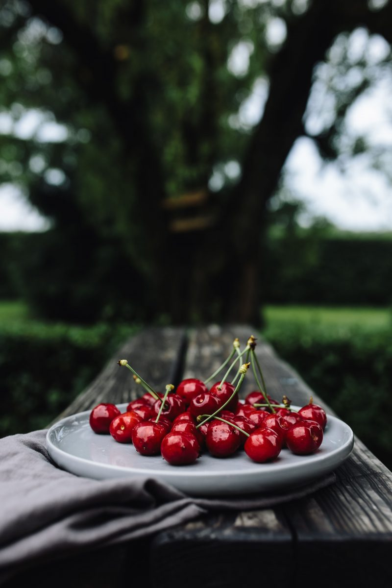 Fresh cherries in the garden