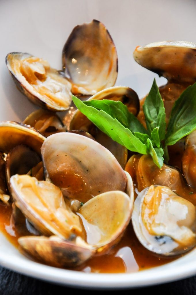 Clams with salsa close up