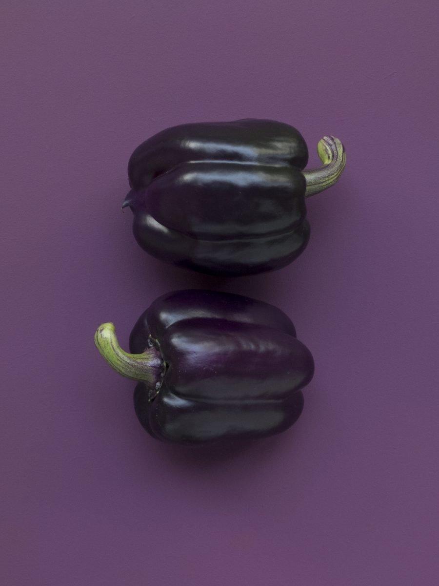 Purple capsicum