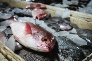 Balinese Red Snapper fish