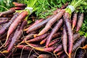 Organic purple carrots at a local farmers market