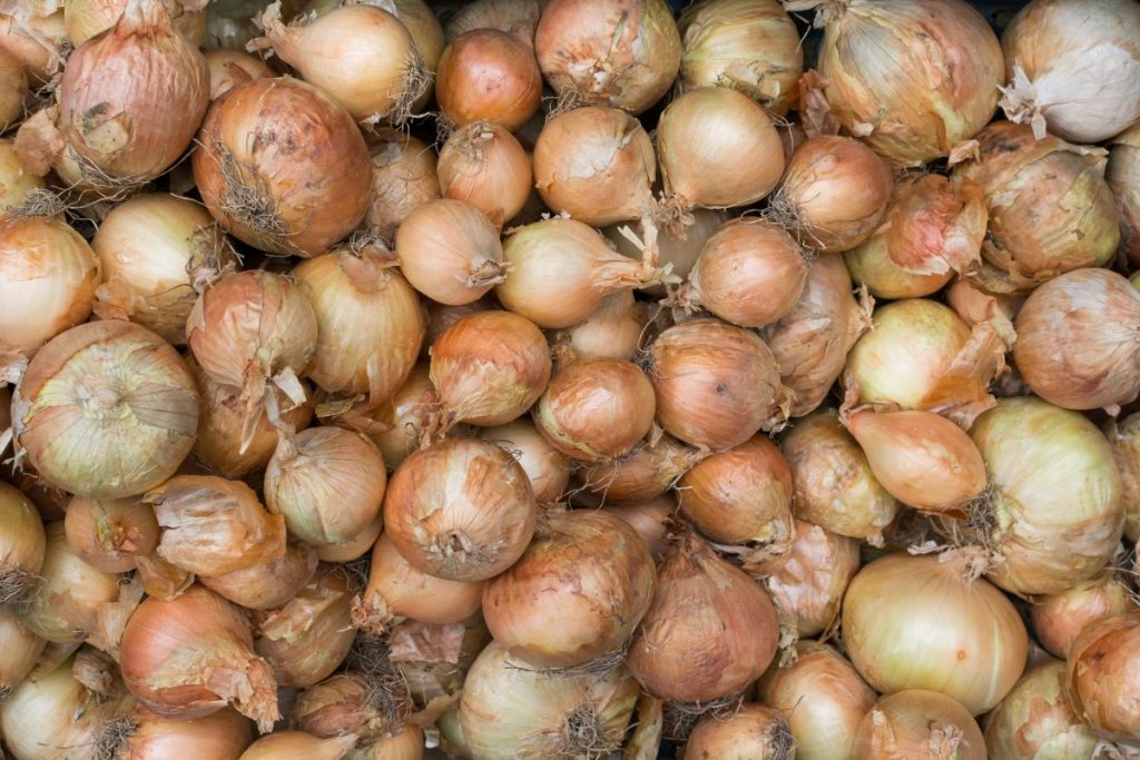 Full frame of onions on a market