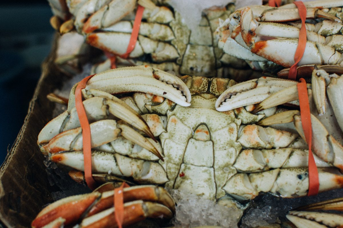 Sea crab at fish market
