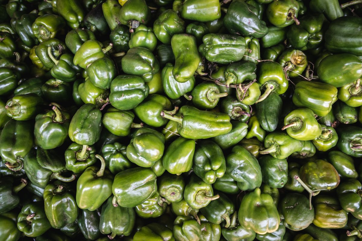 Full frame of green bell peppers