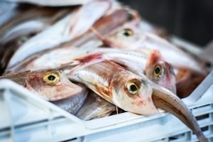 Glistering fish at a fish market