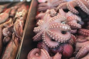 Octopus at a fish market
