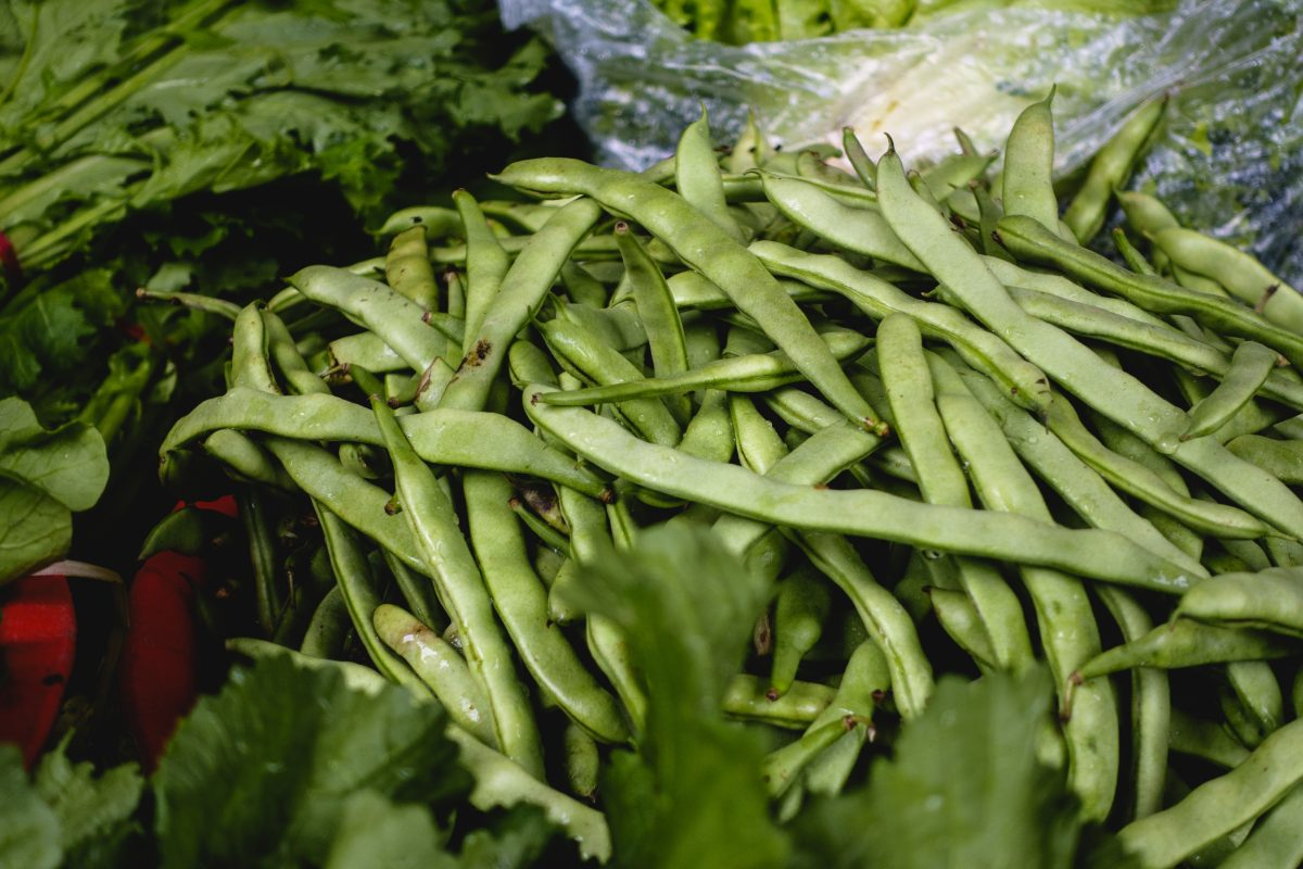 Fresh green bean pods