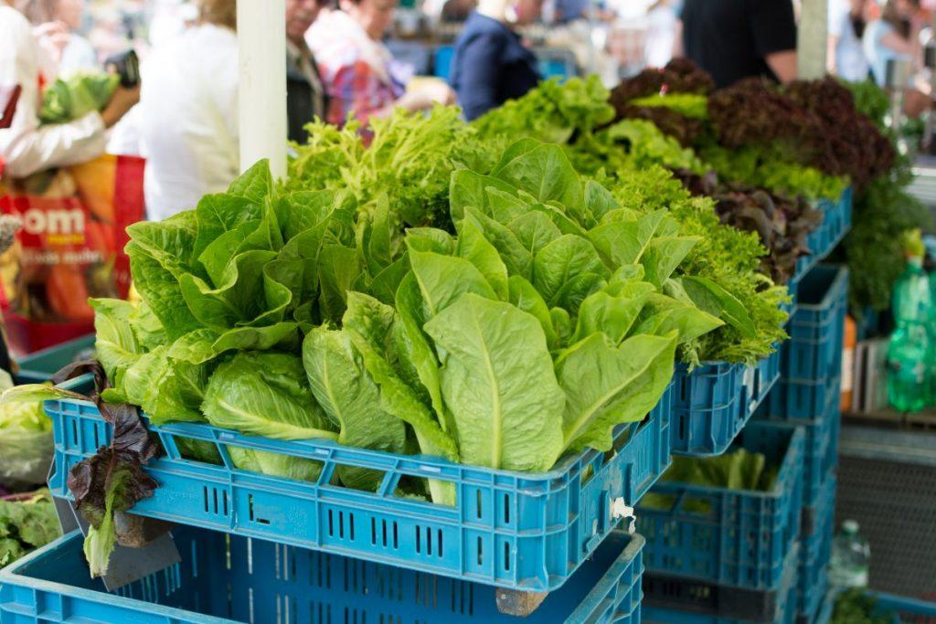 Fresh healthy greens on farmers market