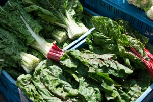 Mangold and beetroot leaves for sale