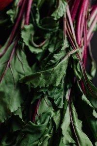 Beet greens detail