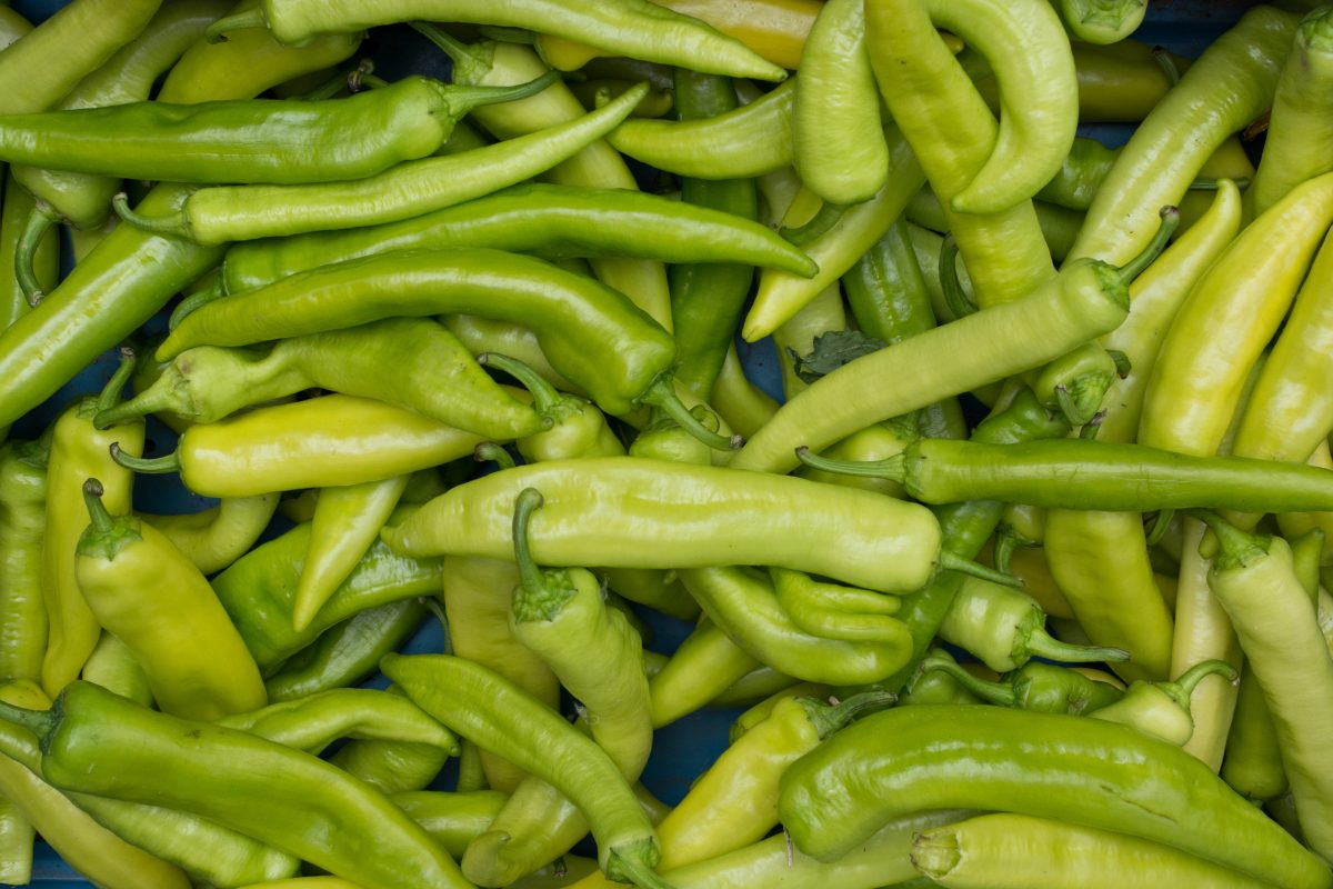 Long green peppers
