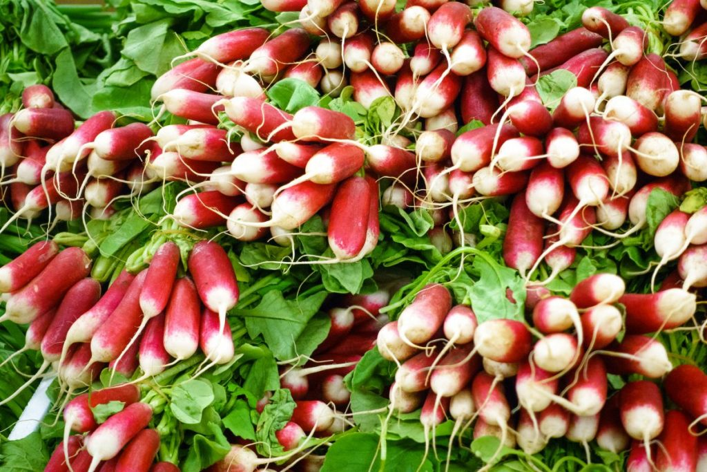 Radishes on a farmers market