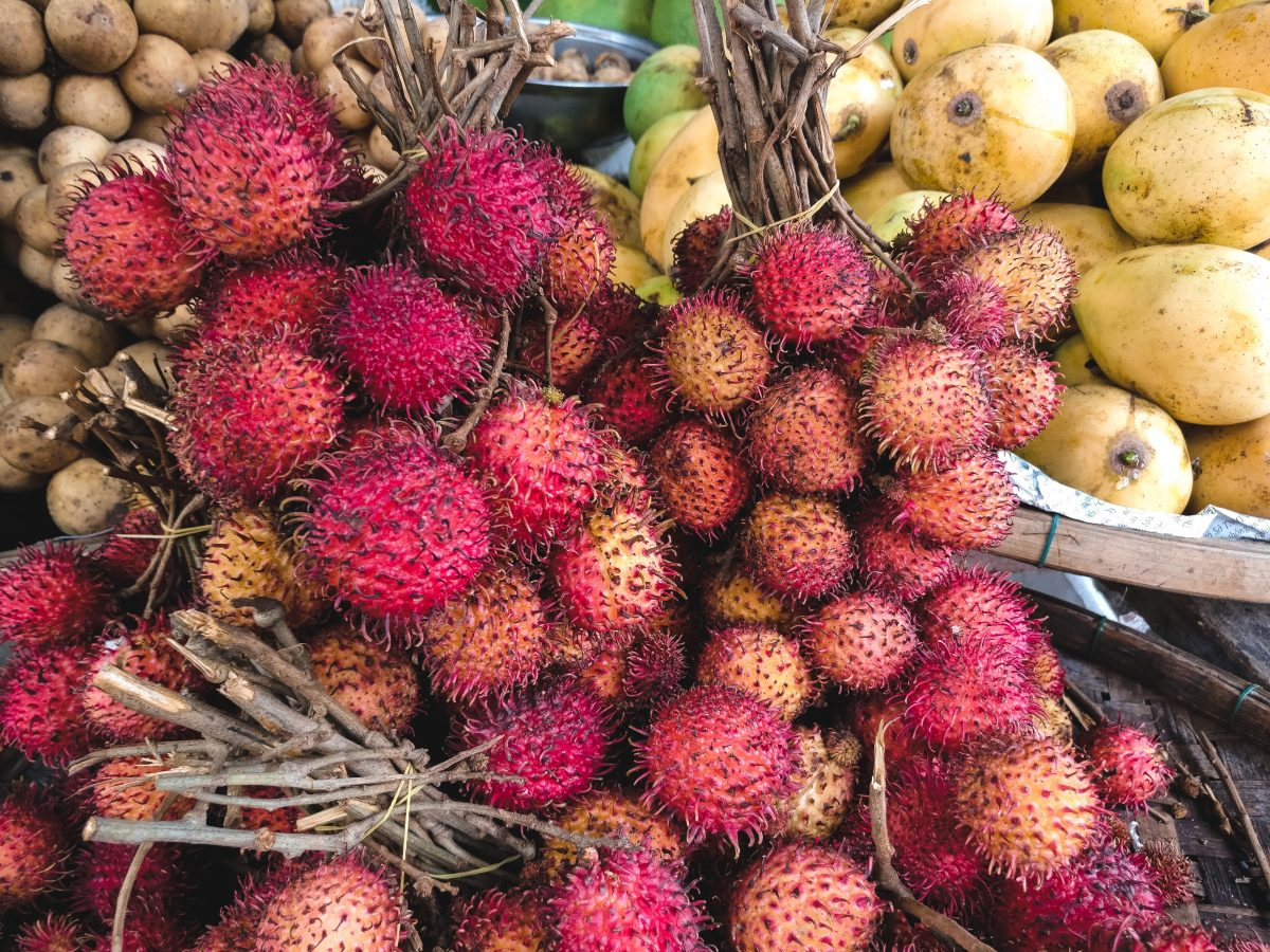 Rambutan fruit close up
